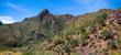 Saguaro    _1ccP7.jpg