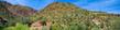 Saguaro    _1ccP9.jpg