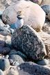 Standing Rocks  _D3C6993_1.jpg
