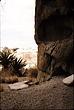 ancientcampe.jpg
