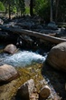 Mountain Creek   _D3C1747_1.jpg