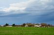 Bottom Land Pasture    _DS72955_1cc.jpg