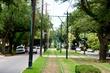 St Charles Avenue Line    _D3C3675_1.jpg