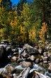 Bishop Creek    _D3C2202_1cc.jpg