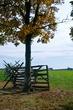 Gettysburg Rail Fence    _D3C4154_1_D3C4145_1.jpg