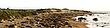 Rookery Panorama    seal pano1_1cc.jpg