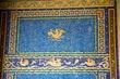 Wall Mosaic    _D3C6934_1cc.jpg