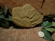 Small Etched Stone Garden Art-5.jpg