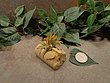 Tiny Cored Stone Planter Pot -161.jpg