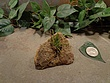 Tiny Natural Stone Planter Pot-3.jpg