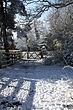 snow_apr08_02.jpg