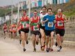 Bmth-qtr-Marathon-040415_020.jpg