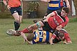 1stXV-vs-Hereford-160313_004.jpg
