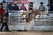 homestead rodeo 2010 (152).jpg