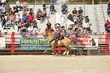 Homestead Rodeo_D3 (101).jpg