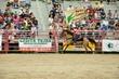 Hms_rodeo2012-121.jpg