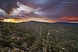 Catalina Mountains Sunrise.jpg