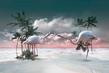 My Inner Tropics_Flamingo.jpg