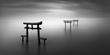 Tara-Oouo-Shrine.jpg