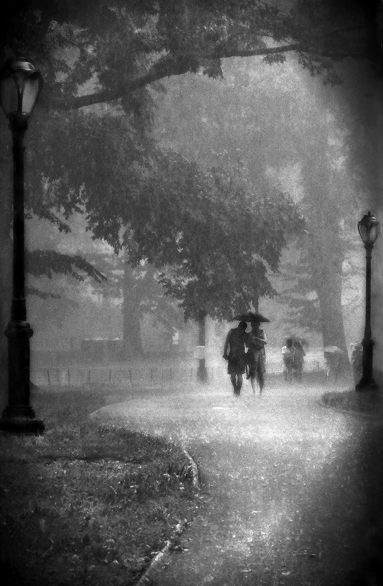Rain n love black and white photography by steven l miller words