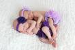 Newborn Twins.jpg