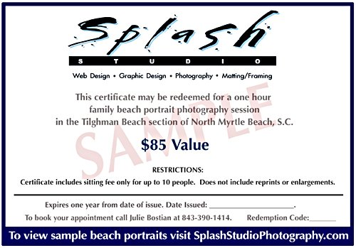 Session Gift Certificate.jpg :: $85 value but you pay only $75. This