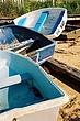 Rowboats3_709500.jpg