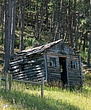 Black Hills NF Log Cabin-1.jpg