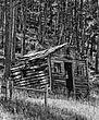 Black Hills NF Log-Cabin-2.jpg