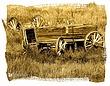 Black-Hills-NF-Wagon-1.jpg