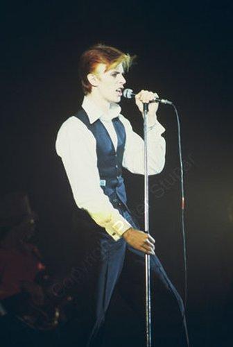 Bowie 102.jpg