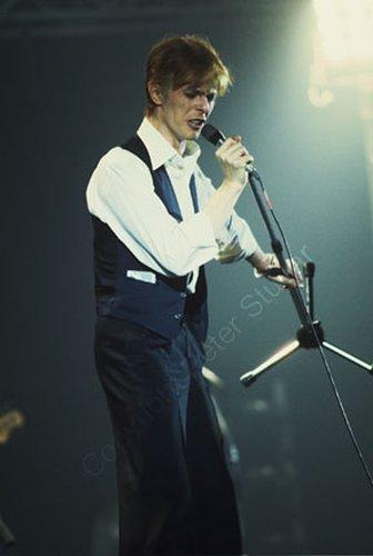 Bowie 103.jpg