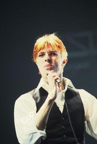 Bowie 108.jpg