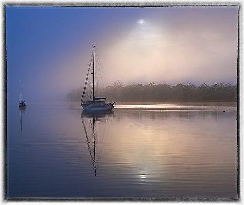 franklin fog.jpg