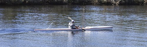 2014 ss kayakP3013175.jpg