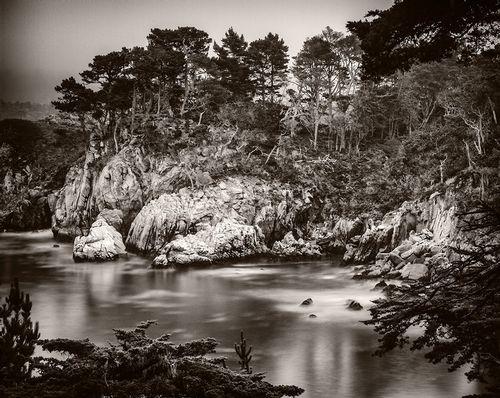 Pt Lobos Seascape.jpg
