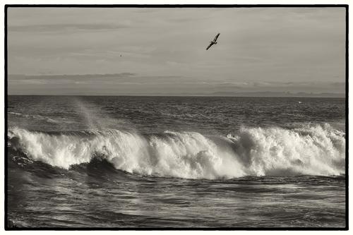 Waves - Monterey Bay National Marine Sanctuary.jpg