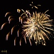 Fireworks 001  800px.jpg