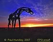 Paul Hundley FPO proof  S114--0003.jpg