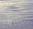 Snow  011  800px.jpg