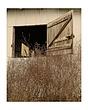 barn door window.jpg