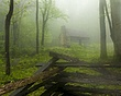 cabin in the fog raw DSC_2447.jpg