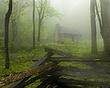 cabin in the fog raw DSC_2447.jpg