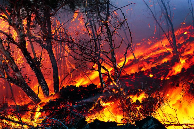 166.jpg :: Kilauea Volcano. Hawaii Volcanoes National Park. USA