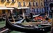 Venice080423venice 4350421.jpg