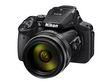 Nikon P900.jpg