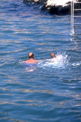 SurfSwim0003.jpg