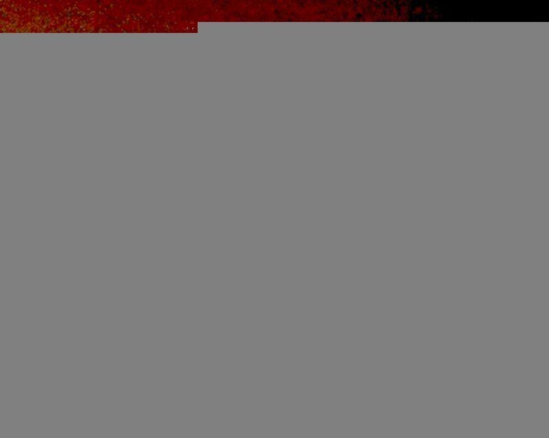 11-10-15 KALAMAZOO MICHIGAN--FILER FILES....jpg