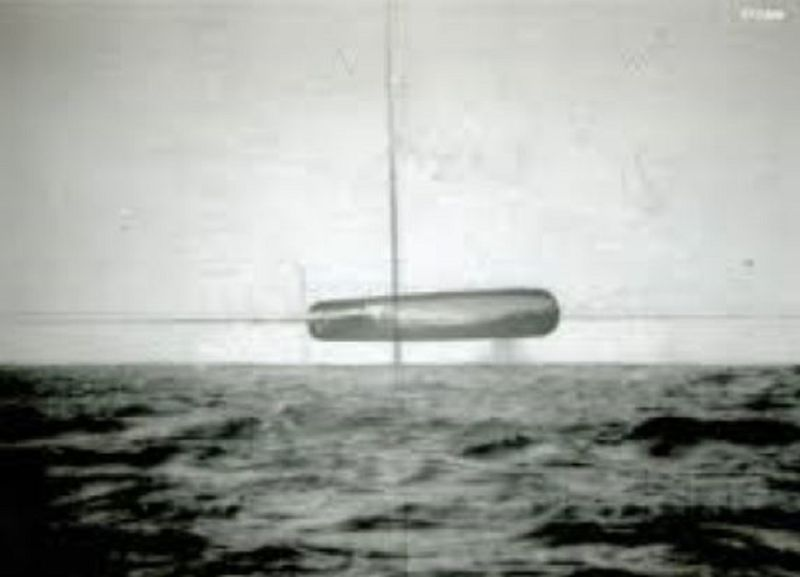 MARCH 1971--SUBMARINE TREPANG IN THE ATLANTIC.jpg
