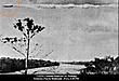 7-19-52 PUERTO MALDONADO PERU--UFO CASEBOOK--A.jpg